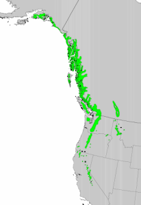 """Distribution of Mountain Hemlock from USGS ( """"Atlas of United States Trees"""" by Elbert L. Little, Jr. )"""