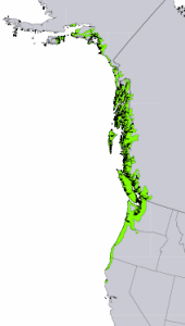 """Distribution of Sitka Spruce from USGS ( """"Atlas of United States Trees"""" by Elbert L. Little, Jr. )"""