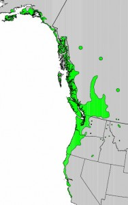 "Distribution of Sitka Willow from USGS ( ""Atlas of United States Trees"" by Elbert L. Little, Jr. )"
