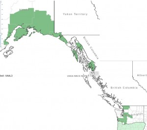 Distribution of Alaska Blueberry from USDA Plants Database