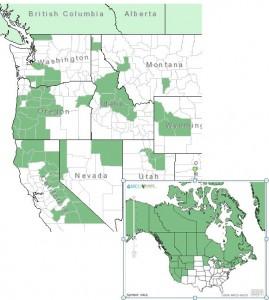 Distribution of Bog Blueberry from USDA Plants Database