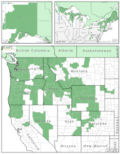 Distribution of Black Swamp Gooseberry from USDA Plants Database