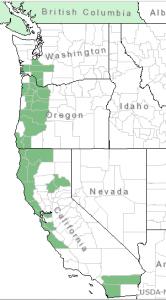 Distribution of Western Burning Bush from USDA Plants Database